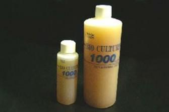 sbc1000_001